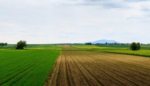 農地の売却は困難?転用のデメリットや農地の売却相場を不動産のプロが徹底解説